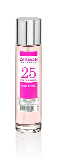 Caravan nº25